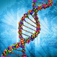 DNA Storage to Replace Long-term Electronic Storage?