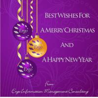 Happy Holidays from Ergo!